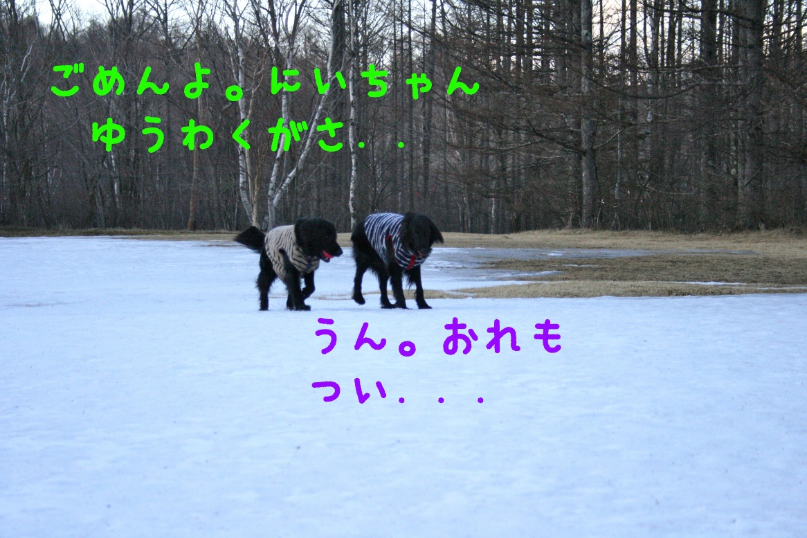 c0237824_23135030.jpg