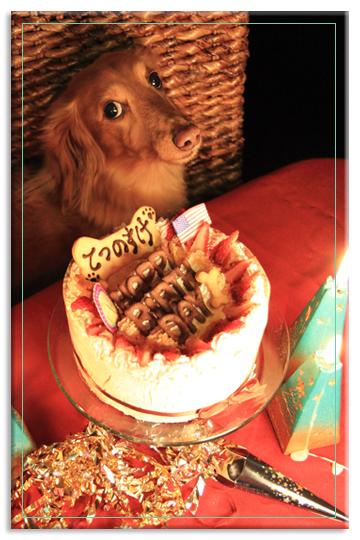 おうちスタジオ Vol. 28: Happy 8th Birthday♪_e0166336_1154632.jpg