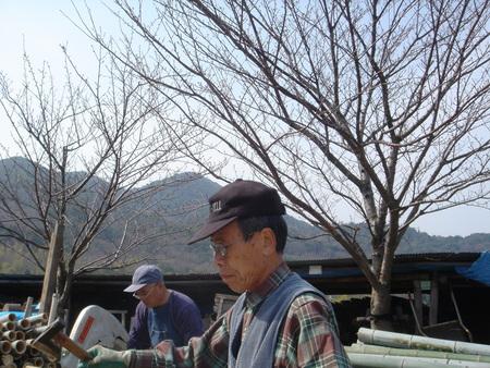 竹炭部会:竹材準備_c0108460_16155453.jpg