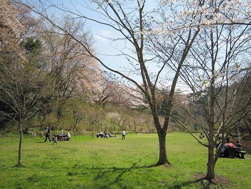 春の風景。_b0157216_2135831.jpg