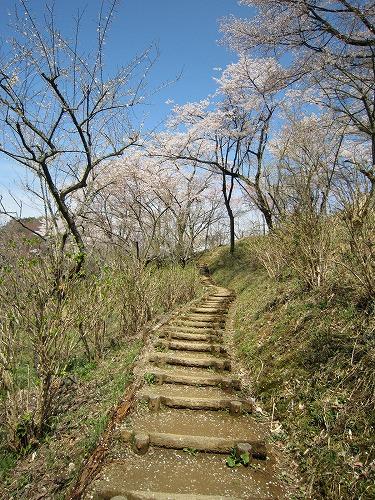 春の風景。_b0157216_21404157.jpg