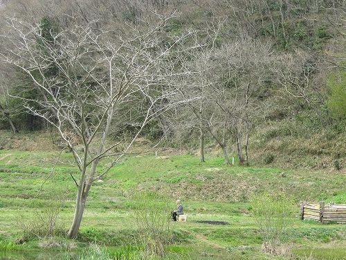 春の風景。_b0157216_2214450.jpg