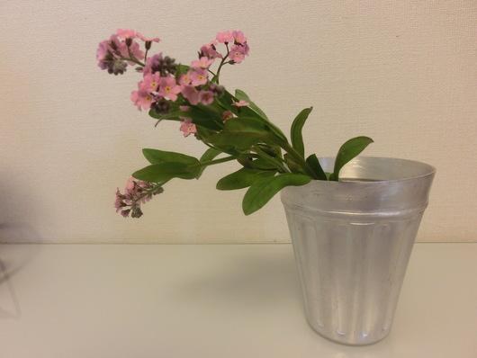 お花見弁当・・・♪_b0247223_1185349.jpg