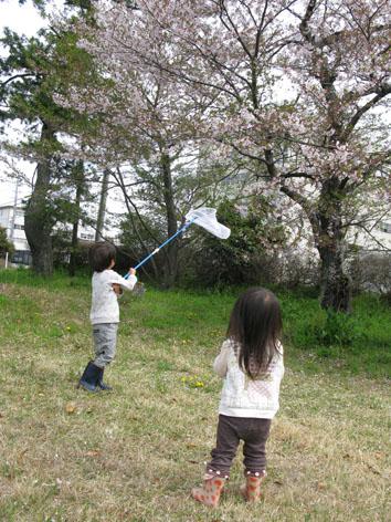 春の一日_f0129726_2243109.jpg