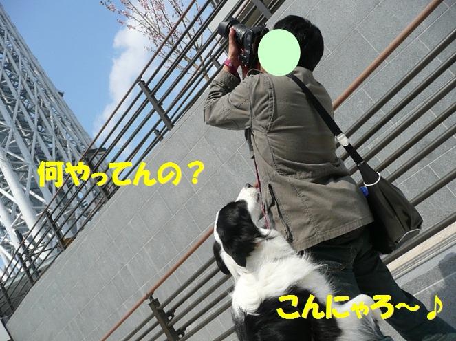 c0147241_21361789.jpg