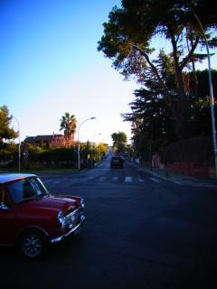 morning of Roma_02