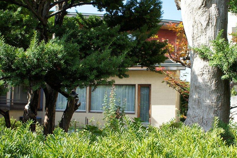 札幌の旧城下医院_c0112559_15461813.jpg