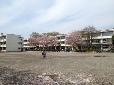 小学校閉校イベント_d0000476_20313177.jpg