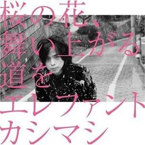 桜の花舞い上がる♪_d0096499_11385692.jpg