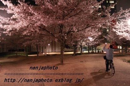 e0268999_324362.jpg