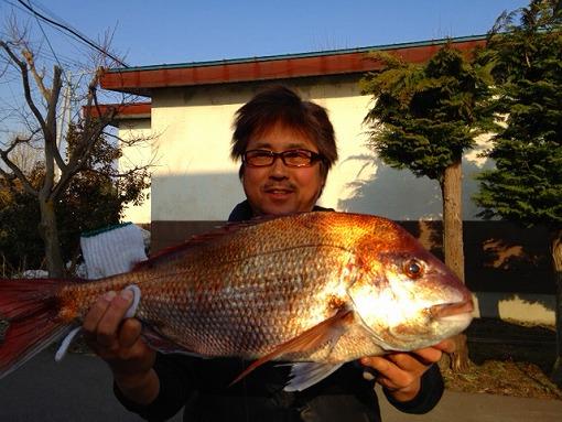 日本海でアシカと出会う_b0150120_13542343.jpg
