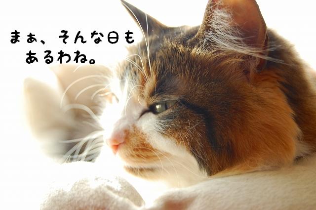 c0181639_011152.jpg