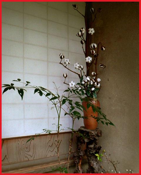 春をいただきに京都へ。旬を食べて、長生き・・・ネッ!_e0236072_16102590.jpg
