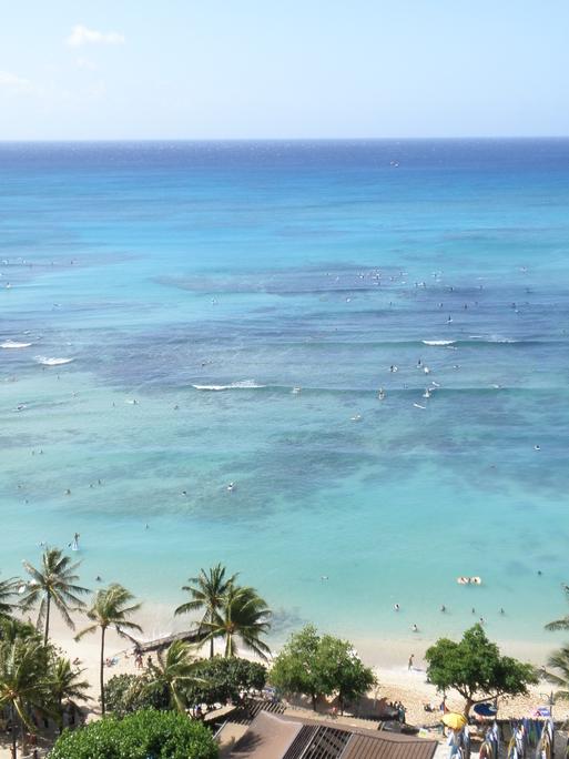 今更 ハワイ  ⑤ - Ⅰ_d0062076_1281552.jpg