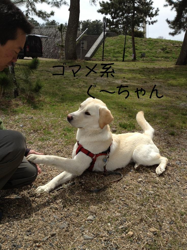 カヌーでお花見・海津大崎_e0244283_1829191.jpg