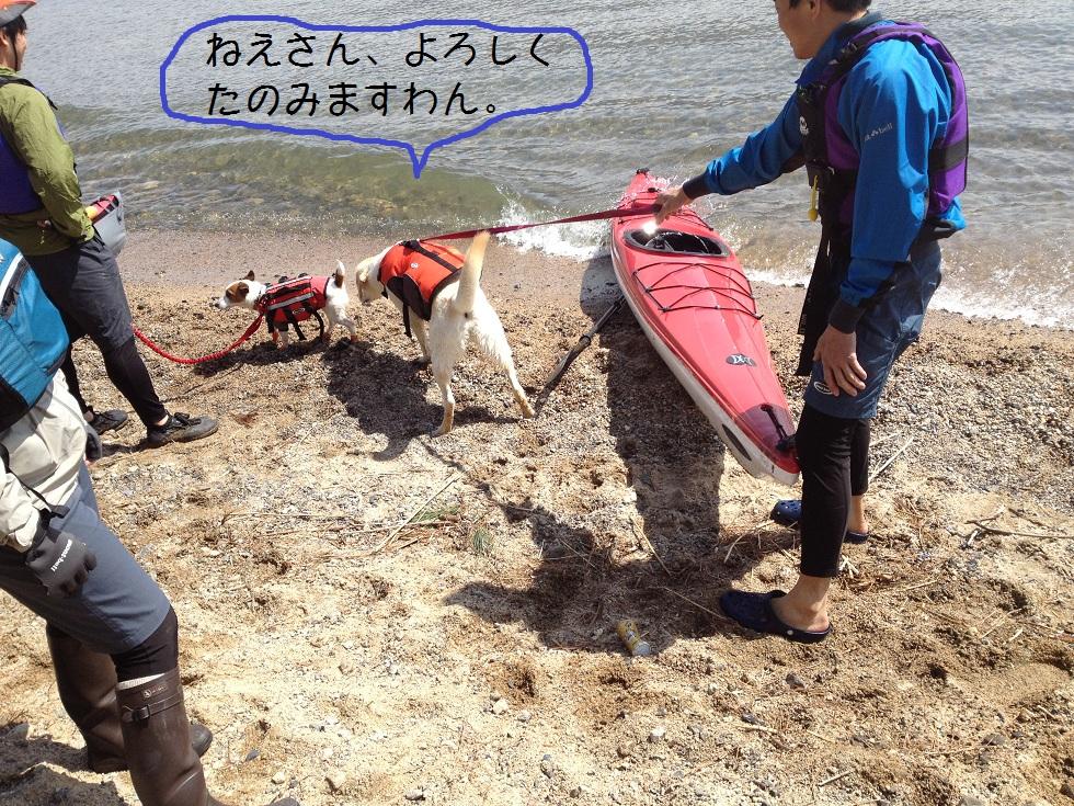 カヌーでお花見・海津大崎_e0244283_1835323.jpg