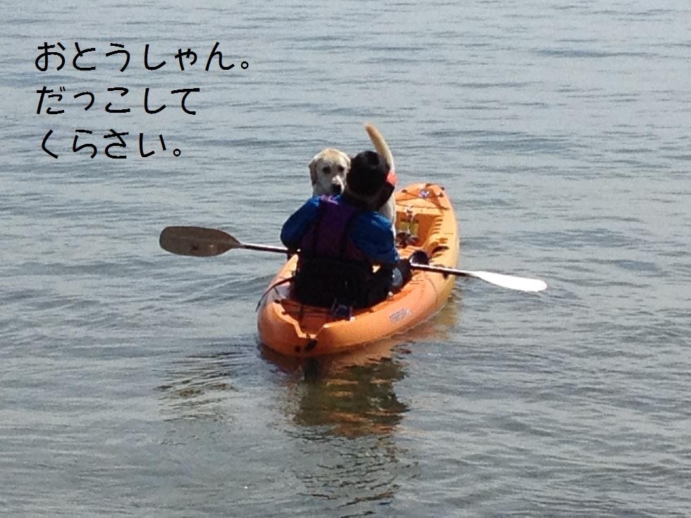 カヌーでお花見・海津大崎_e0244283_1923247.jpg