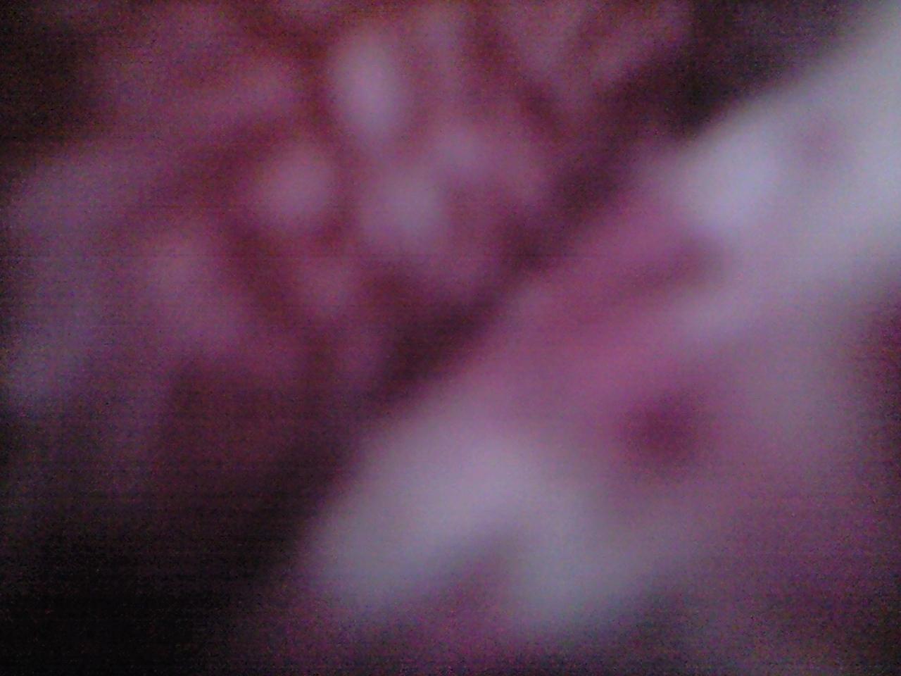 c0149285_19514717.jpg