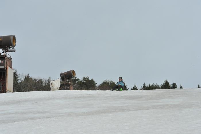 雪がある限り♪ part2_a0049296_1928799.jpg