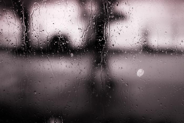 雨宿り_d0127209_22351317.jpg