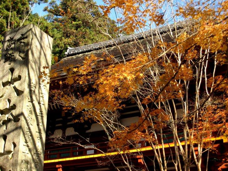 京都・奈良錦秋編(7):室生寺(10.12)_c0051620_621918.jpg