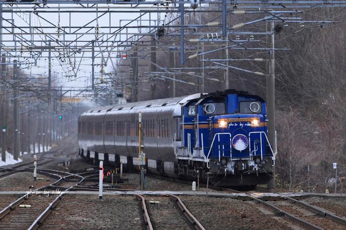 星明りの中の列車あんど白鳥さんより~_a0039860_1932367.jpg