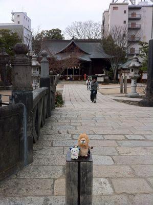 松本での展示終了致しました。_c0186460_19541787.jpg