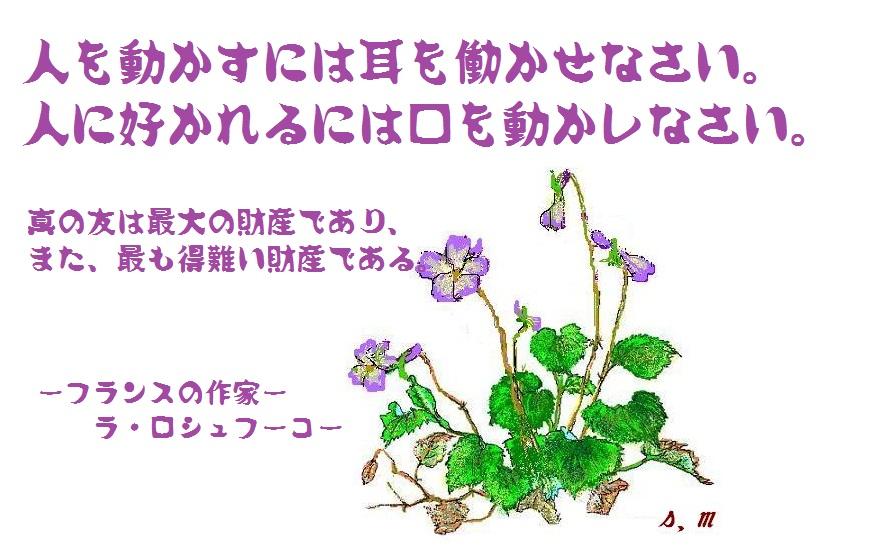 d0083472_20164492.jpg