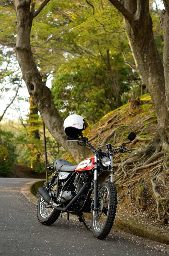 バイクで納品ついでに花見_f0167977_18381811.jpg