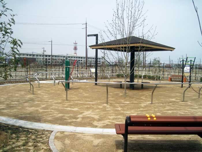 職場の前の公園_e0016894_20534226.jpg