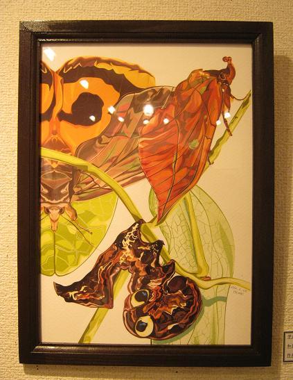 第2回 -mozo mozo-虫・蟲 展 その3_e0134502_18554927.jpg