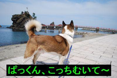 f0109202_2263695.jpg