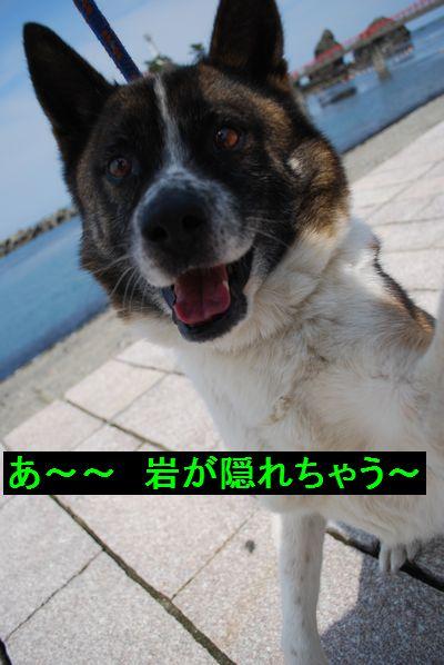 f0109202_227097.jpg