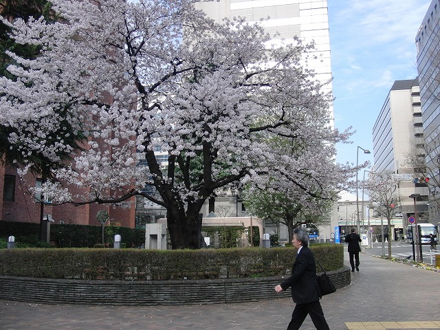 財政研修で過ごした日野市、立川市での3日間_f0141310_7503150.jpg