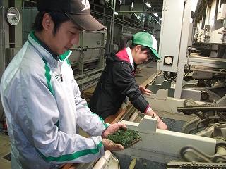 香り高い茶の産地鹿児島県大隅半島田代地区_d0108817_8353837.jpg