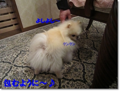 b0167519_1043720.jpg