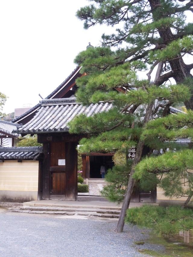 京都 Kyoto_c0213220_22431783.jpg