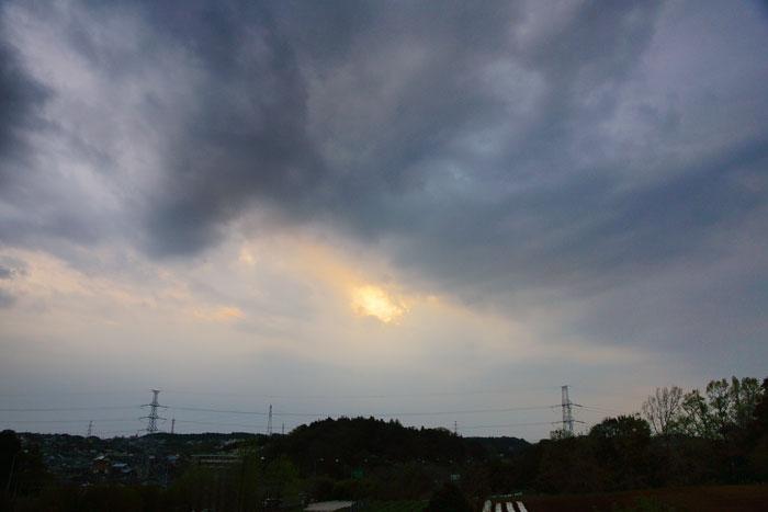 花雲深く 夕_e0077521_21324529.jpg