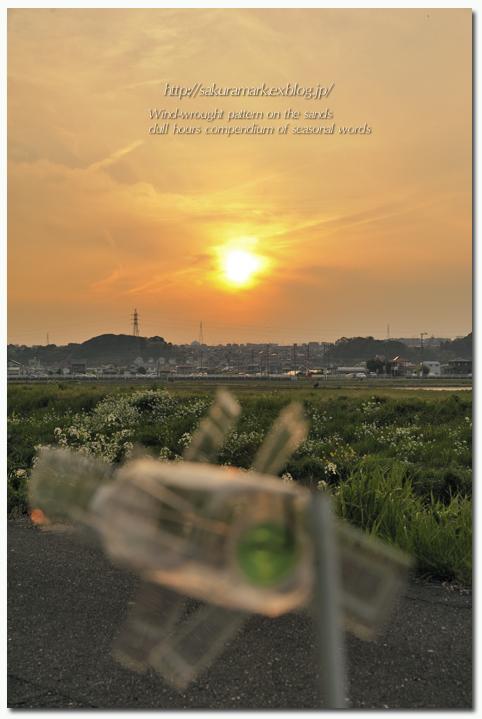 夕日と風車。_f0235723_19223469.jpg