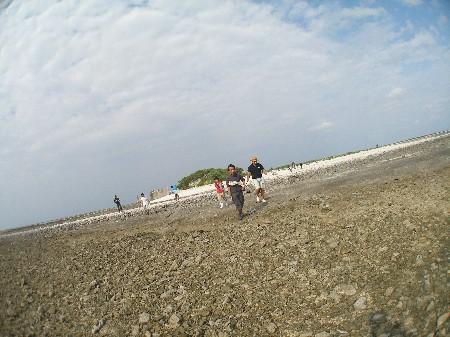 12.4.18 チービシ・神山島清掃_b0100730_2040137.jpg