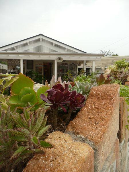 toujours jardin,fûkiteiです。_b0177130_21403092.jpg