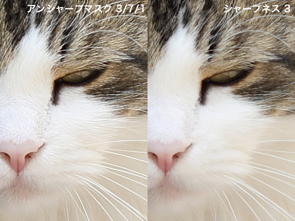b0229648_6172089.jpg