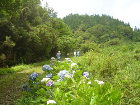 定例活動日:進入路草刈り_c0108460_003844.jpg