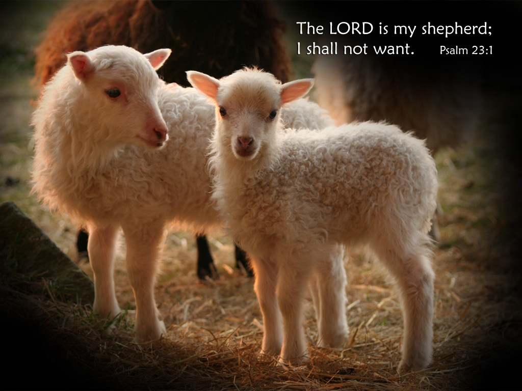 4月18日Ⅱ列王記16-18章『主の目にかなうこと』_d0155777_8421379.jpg