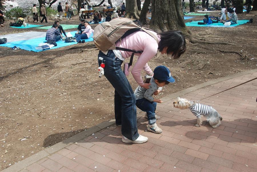 吉祥寺の街_c0187781_227595.jpg