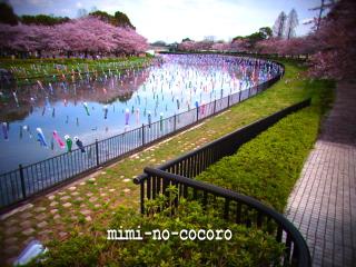 f0155381_2010128.jpg