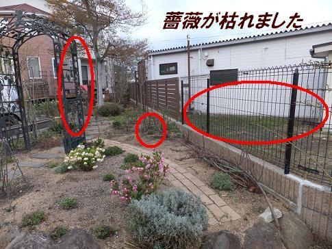 f0179203_16364096.jpg