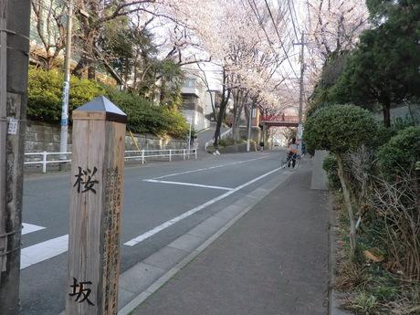桜坂_e0215910_21352978.jpg