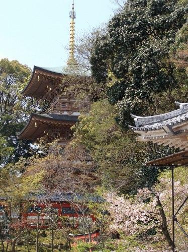 須磨寺で敦盛に会えました!_f0223914_19341179.jpg