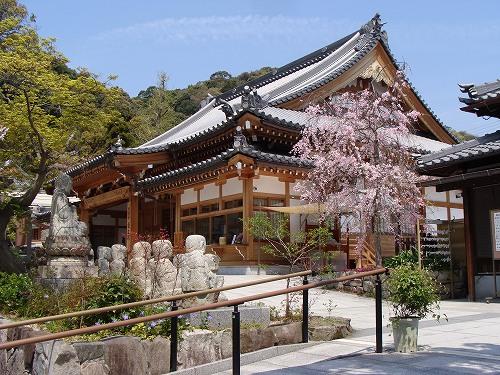 須磨寺で敦盛に会えました!_f0223914_1934357.jpg
